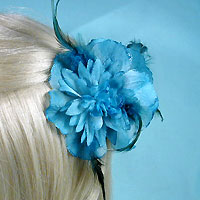 hair accessories, barrettes, combs, clips, claws, bows, flowers, headbands